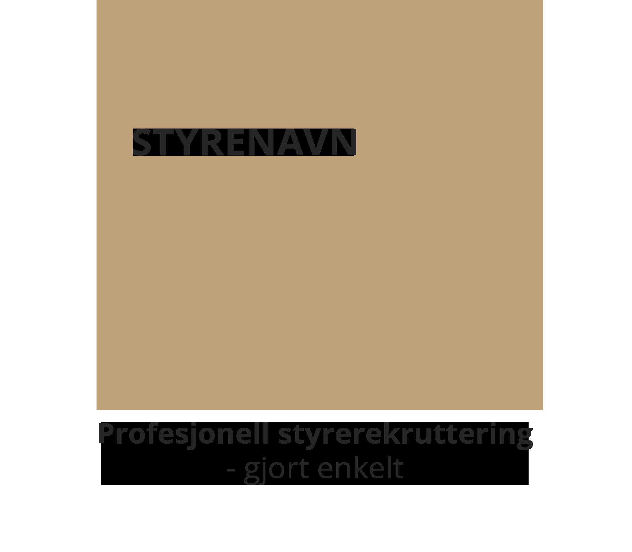 Logo www.styrenavn.no